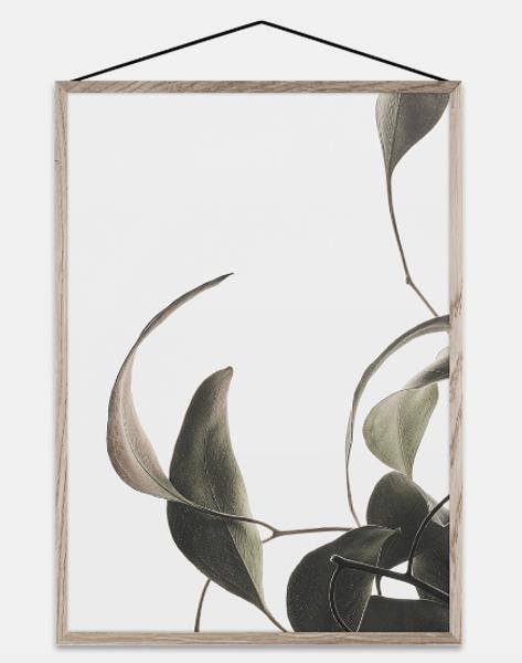 Bilde av Floating Leaves 08 - A3