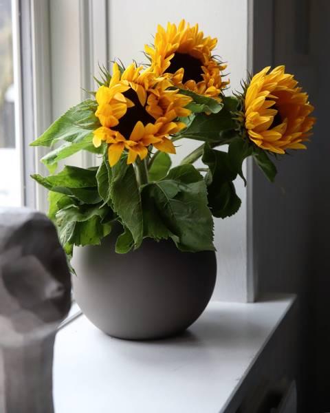 Bilde av Ball Vase - Mud